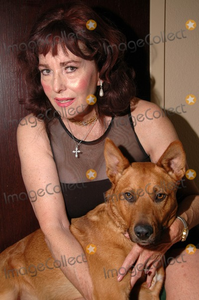 Edy Williams Photo - Edie Williamsat a photo shoot to celebrate the adoption of her new dog Private Location Los Angeles CA 10-23-07