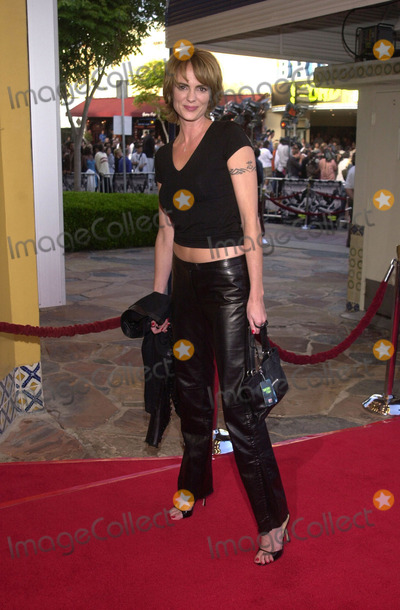 Michelle Johnson Photo -  Michelle Johnson at the premiere of Warner Brothers Swordfish at Manns Village Theater Westwood 06-04-01