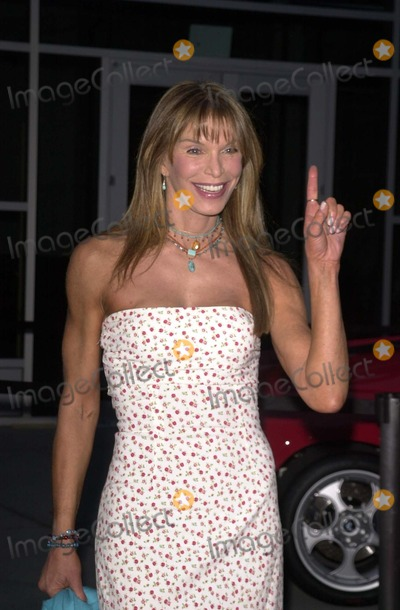 Ann Turkel Photo - Ann Turkel at a screening of Between Strangers at the Los Angeles Italian Film Awards ArcLight Theaters Hollywood CA 04-29-03