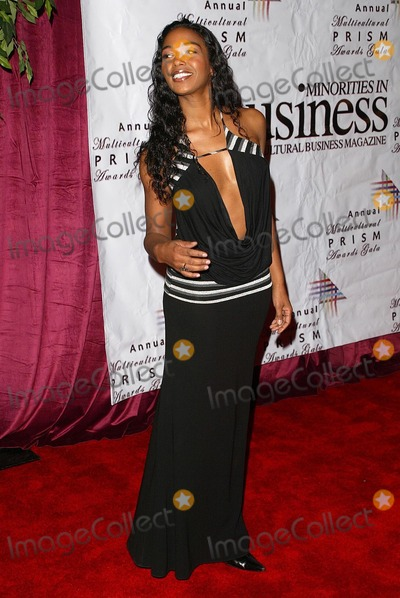 Ananda Lewis Photo - Ananda Lewisat the 10th Annual Multicultural Prism Awards Gala Hilton Hotel Universal City CA 12-15-05
