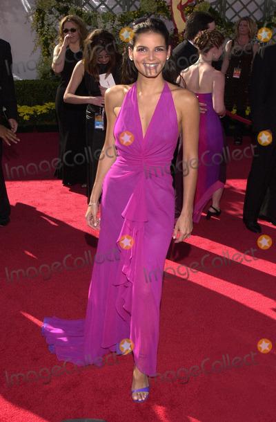 Angie Harmon Photo -  Angie Harmon at the Primetime Emmy Awards held at the Shrine Auditorium 09-10-00