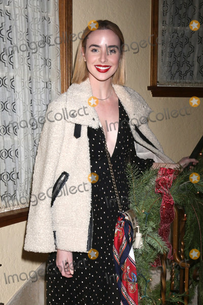 Ashleigh Brewer Photo - LOS ANGELES - DEC 16  Ashleigh Brewer at the Heather Tom James Achor Zane Achor Christmas Party at their private residence on December 16 2017 in Glendale CA