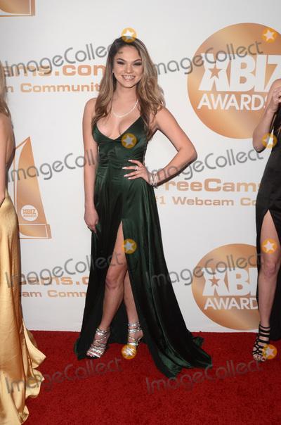 Athena Faris Photo - LOS ANGELES - JAN 17  Athena Faris at the 2019 XBIZ Awards at the Westin Bonaventure Hotel on January 17 2019 in Los Angeles CA
