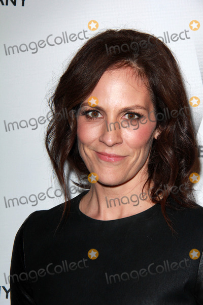 Annabeth Gish Photo - LOS ANGELES - JAN 11  Annabeth Gish at the The Weinstein Company  Netflix Golden Globes After Party at a Beverly Hilton Adjacent on January 11 2015 in Beverly Hills CA