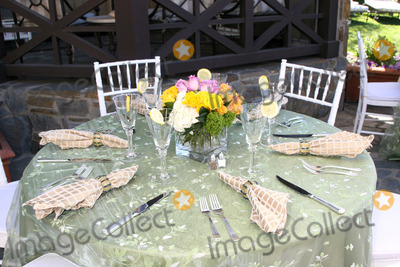 Amelia Heinle Photo - Table SettingsAmelia Heinle Luckinbill Baby ShowerHome of Melody Thomas ScottLos Angeles   CAOctober 8 2007