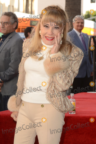 Terri Moore Photo - LOS ANGELES - JAN 9  Terry Moore at the Burt Ward Star Ceremony on the Hollywood Walk of Fame on JANUARY 9 2020 in Los Angeles CA