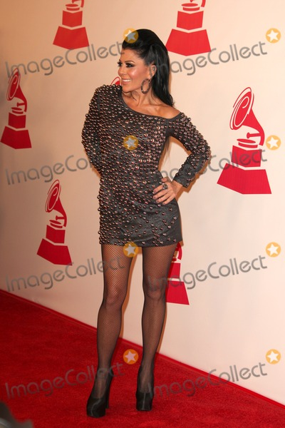 Alejandra Guzman Photo - LOS ANGELES - NOV 9  Alejandra Guzman arrives at the 2011 Latin Recording Academys Person of the Year honoring Shakira at Mandalay Bay Resort  Casino on November 9 2011 in Las Vegas NV