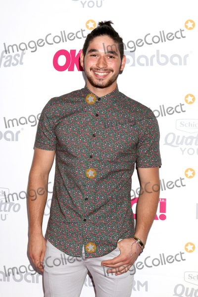 Alan Bersten Photo - LOS ANGELES - MAY 17  Alan Bersten at the OK Magazine Summer Kick-Off Party at the W Hollywood Hotel on May 17 2017 in Los Angeles CA