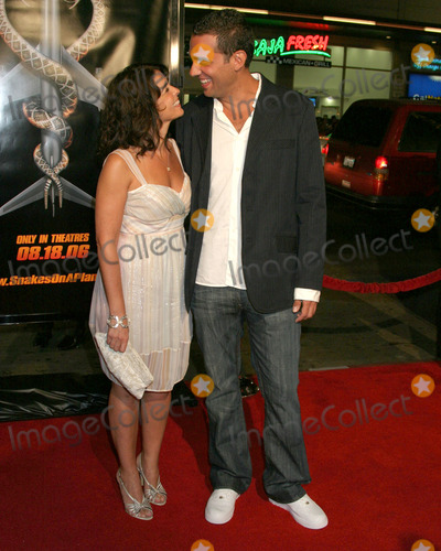 Annabella Sciorra Photo - Annabella Sciorra Bobby CannavaleSnakes on a Plane PremiereGraumans Chinese Theater Hollywood CAAugust 17 2006