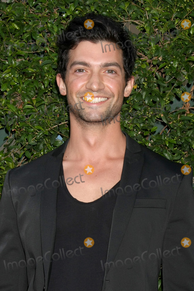 Alpay Photo - Gavin OConnorLOS ANGELES - JUL 29  David Alpay at the Hallmark 2015 TCA Summer Press Tour Party at the Private Residence on July 29 2015 in Beverly Hills CA