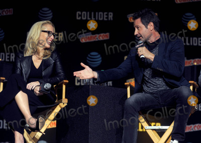 David Duchovny Photo - Photo by Dennis Van TinestarmaxinccomSTAR MAX2017ALL RIGHTS RESERVEDTelephoneFax (212) 995-119610817Gillian Anderson and David Duchovny at The X-Files panel during The 2017 New York Comic Con in New York City