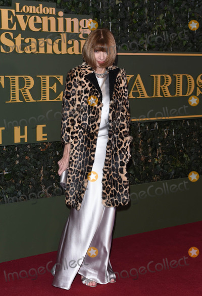 Anna Wintour Photo - Photo by KGC-03starmaxinccomSTAR MAXCopyright 2015ALL RIGHTS RESERVEDTelephoneFax (212) 995-1196112215Anna Wintour at the London Evening Standard Theatre Awards(London England UK)