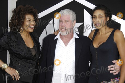 Blake Perlman Photo - Opal Perlman Ron Perlman and Blake Perlman during the premiere of the new movie from Warner Bros Pictures PACIFIC RIM held at the Dolby Theater on July 9 2013 in Los AngelesPhoto Michael Germana Star Max