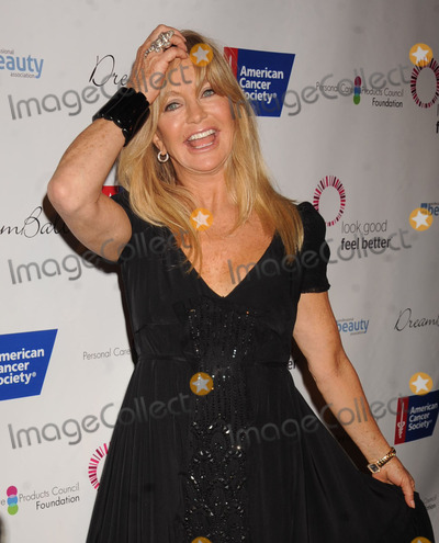 Goldie Hawn Photo - Photo by Demis Maryannakisstarmaxinccom2013ALL RIGHTS RESERVEDTelephoneFax (212) 995-119692613Goldie Hawn at the 29th Annual DreamBall(NYC)