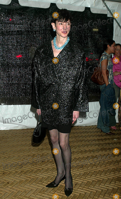 Amy Fine Collins Photo - Amy Fine Collins at Cooper-hewitts 2003 National Design Awards Kick-off Party at Cooper-hewitt National Design Museum in New York City on June 3 2003 Photo Henry Mcgee Globe Photos Inc 2003
