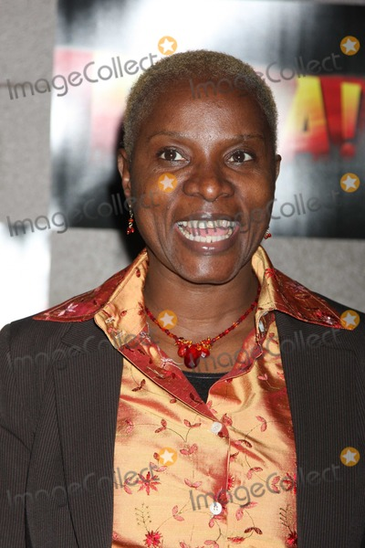Angelique Kidjo Photo - NYC  112309Angelique Kidjo at opening night of Fela on Broadway at the Eugene ONeill TheatreDigital Photo by Adam Nemser-PHOTOlinknet