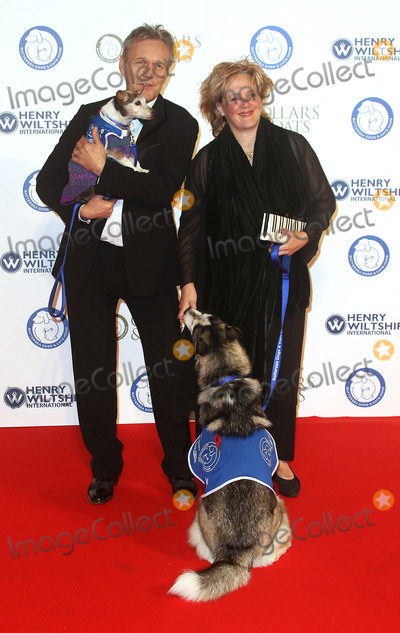 Sarah Fisher Photo - Nov 12 2015 - London England UK - Anthony Head and Sarah Fisher attending Battersea Dogs  Cats Home Collars And Coats Gala Ball