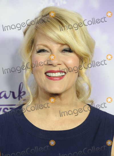 Barbara Niven Photo - January 8 2015 PasadenaBarbara Niven arriving at the Hallmark Channel and Hallmark Movies and Mysteries Winter 2016 TCA Press Tour at Tournament House on January 8 2016 in Pasadena CaliforniaBy Line Peter WestACE PicturesACE Pictures Inctel 646 769 0430