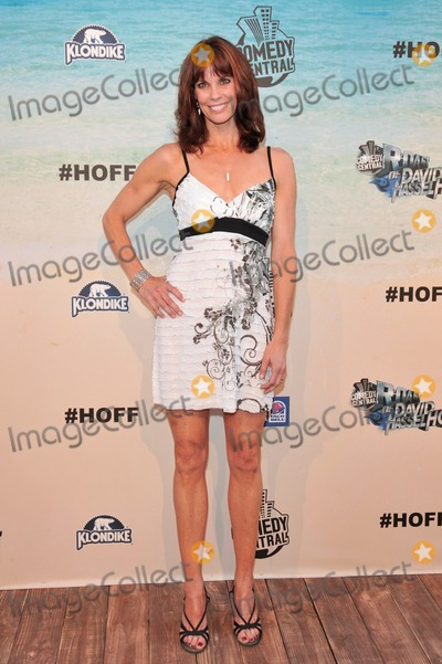 Alexandra Paul Photo - Alexandra Paul - at the Comedy Central Roast of Baywatch star David Hasselhoff at Sony Studios Culver City CAAugust 1 2010  Los Angeles CAPicture Paul Smith  Featureflash