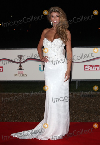 Amy Willerton Photo - Amy Willerton arriving for The Sun Military Awards at Greenwich Maritime Museum London 11122013 Picture by Alexandra Glen  Featureflash