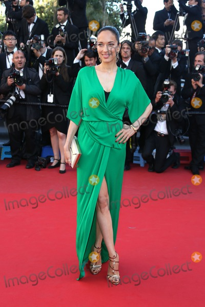 Carmen Chaplin Photo - Carmen Chaplin at the 66th Cannes Film Festival - La Venus a la fourrure - premiereCannes France 25052013 Picture by Henry Harris  Featureflash