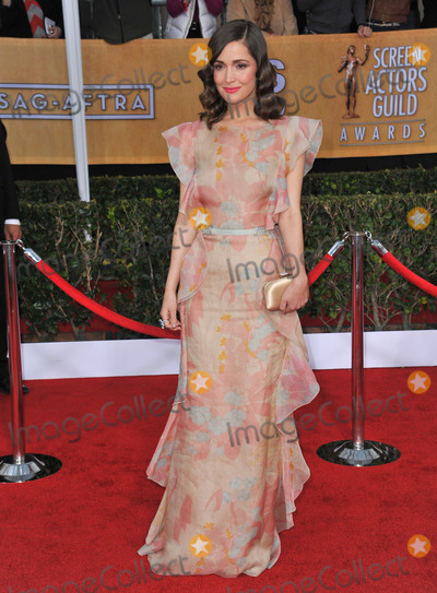 Rose Byrne Photo - Rose Byrne at the 19th Annual Screen Actors Guild Awards at the Shrine Auditorium Los AngelesJanuary 27 2013  Los Angeles CAPicture Paul Smith  Featureflash