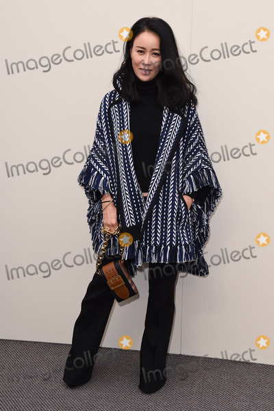 Na Ying Photo - Na Ying at the Burberry Prorsum show as part of London Fashion Week AW 2016  at Kensington Gardens LondonFebruary 22 2016  London UKPicture Steve Vas  Featureflash