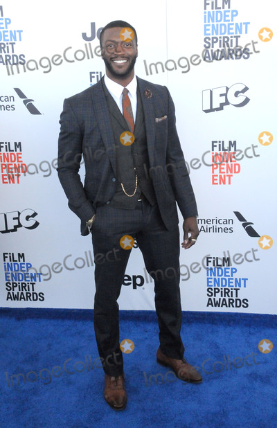 Aldis Hodges Photo - SANTA MONICA CA - FEBRUARY 25  Actor Aldis Hodge attends 2017 Film Independent Spirit Awards on February 25 2017 in Santa Monica California  (Photo by Barry KingImageCollectcom)