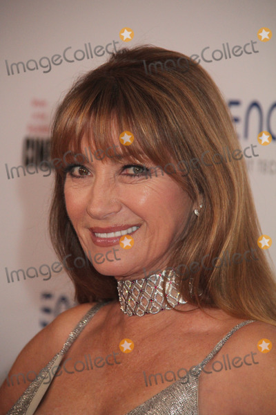 Jane Seymour Photo - Jane Seymour 11082019 The 33rd Annual American Cinematheque Award at The Beverly Hilton Hotel in Beverly Hills CA Photo by Kazuki Hirata  HollywoodNewsWireco