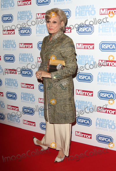 Angela Rippon Photo - LondonUK  Angela Rippon at the Daily Mirror and RSPCA Animal Hero Awards at Grosvenor House Park Lane London 7th September 2017RefLMK73-S666-080917Keith MayhewLandmark MediaWWWLMKMEDIACOM
