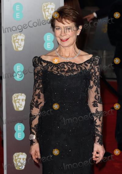 Celia Imrie Photo - London UK  Celia Imrie at EE British Academy Film Awards 2018 - Red Carpet Arrivals at the Royal Albert Hall London on Sunday February 18th 2018 Ref LMK73 -J1591-190218Keith MayhewLandmark Media WWWLMKMEDIACOM