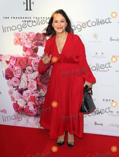 Arlene Phillipsv Photo - London UK Arlene Phillips at Fifis - Fragrance Foundation Awards 2019 at The Brewery Chiswell Street London on May 16th 2019Ref LMK73-J4890-170519Keith MayhewLandmark MediaWWWLMKMEDIACOM