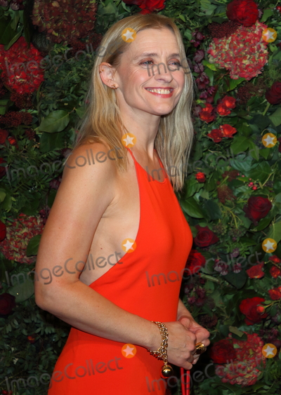 Ann Marie Photo - London UK Anne-Marie Duff at the 65th Evening Standard Theatre Awards London Coliseum London England on the 24th  November 2019Ref LMK73-S2621-251119Keith MayhewLandmark MediaWWWLMKMEDIACOM
