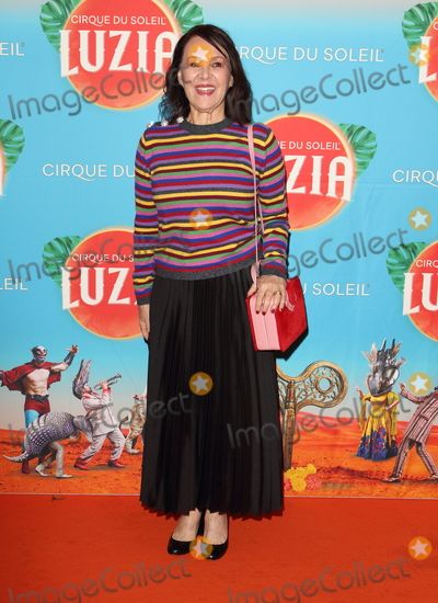 Arlene Phillips Photo - London UK Arlene Phillips at Cirque du Soleil Luzia Press Night at the Royal Albert Hall Kensington London on January 15th 2020Ref LMK73-J6034-160120Keith Mayhew Landmark MediaWWWLMKMEDIACOM