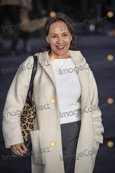 Arlene Phillips Photo - London UK Arlene Phillips at  the UK Premiere of The White Crow at The Curzon Mayfair on March 12 2019 in London EnglandRef LMK386-J4482-130319Gary MitchellLandmark MediaWWWLMKMEDIACOM