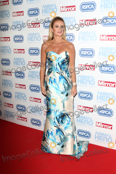 Amanda Holden Photo - LondonUK Amanda Holden at the Daily Mirror and RSPCA Animal Hero Awards at Grosvenor House Park Lane London 7th September 2017RefLMK73-S666-080917Keith MayhewLandmark MediaWWWLMKMEDIACOM