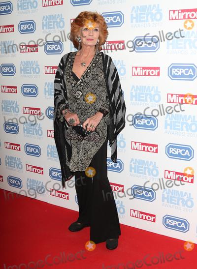 Rula Lenska Photo - LondonUK Rula Lenska  at the Daily Mirror and RSPCA Animal Hero Awards at Grosvenor House Park Lane London 7th September 2017RefLMK73-S666-080917Keith MayhewLandmark MediaWWWLMKMEDIACOM