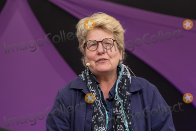 Alan Davies Photo - Southwold Suffolk Sandi Toksvig presents a special live edition of the BBC panel show QI with Alan Davies Lou Conran Rachel Parris and Marcus Brigstocke in the Comedy Arena at Henham Park near Southwold Suffolk 13th July 2018Ref LMK73-J2315-160718Keith MayhewLandmark MediaWWWLMKMEDIACOM