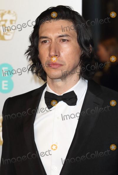 Adam Driver Photo - London UK Adam Driver at EE British Academy Film Awards at the Royal Albert Hall Kensington London on Sunday February 10th 2019Ref LMK73-J4345-110219Keith MayhewLandmark Media WWWLMKMEDIACOM