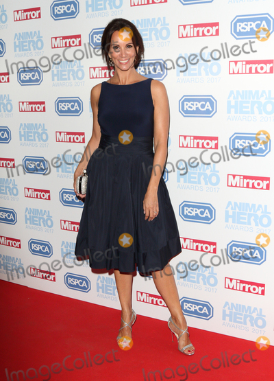 Andrea Mclean Photo - LondonUK  Andrea McLean    at the Daily Mirror and RSPCA Animal Hero Awards at Grosvenor House Park Lane London 7th September 2017RefLMK73-S666-080917Keith MayhewLandmark MediaWWWLMKMEDIACOM