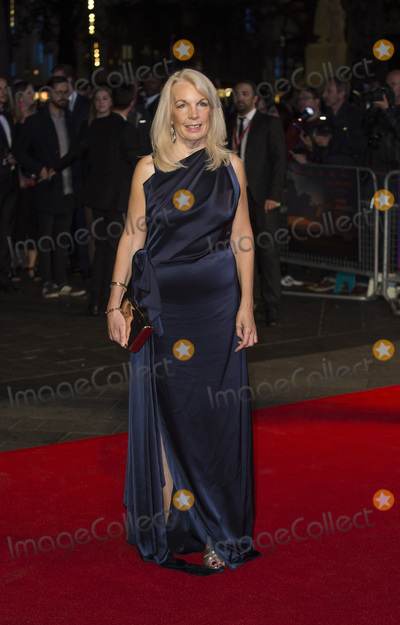 Amanda Nevill Photo - London UK Amanda Nevill at the UK Premiere of Three Billboards Outside Ebbing Missouri at the Closing Night Gala of the 61st BFI London Film Festival held at the Odeon Leicester Square on October 15 2017 in London EnglandRef LMK386-J926-161017Gary MitchellLandmark MediaWWWLMKMEDIACOM