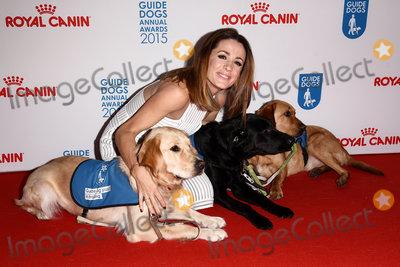 Natalie Pinkham Photo - London UK Natalie Pinkham at The Guide Dog of the Year Awards at The Hilton Park Lane Hotel Park Lane London on Wednesday 9 December 2015 Ref LMK392-58752-101215Vivienne VincentLandmark Media WWWLMKMEDIACOM