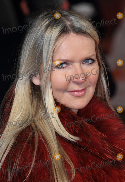 Amanda Wakeley Photo - London UK   Amanda Wakeley at the The Royal Film Performance Of  Mandela Long Walk To Freedom at the Odeon Leicester Square London 5th December  2013 Keith MayhewLandmark MediaLMK73-46121-061213