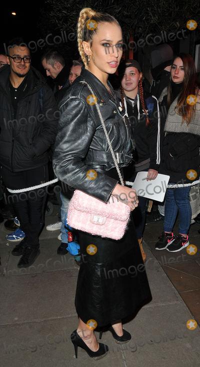 Alice Dellal Photo - London UK Alice Dellal at the ELLE Style Awards 2017 41 Conduit Street Conduit Street London England UK on Monday 13 February 2017Ref LMK315-61694-150217Can NguyenLandmark MediaWWWLMKMEDIACOM