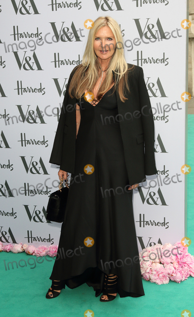 Amanda Wakeley Photo - LondonUK  Amanda Wakeley  at the V  A Summer Gala at the Victoria and Albert Museum Kensington London 23rd June 2016 RefLMK73-60739-230616 Keith MayhewLandmark Media WWWLMKMEDIACOM