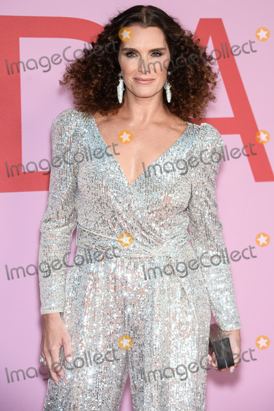 Brooke Shields Photo - BROOKLYN NEW YORK CITY NEW YORK USA - JUNE 03 Actress Brooke Shields wearing a Sachin and Babi outfit arrives at the 2019 CFDA Fashion Awards held at the Brooklyn Museum on June 3 2019 in Brooklyn New York City New York United States (Photo by Image Press Agency)