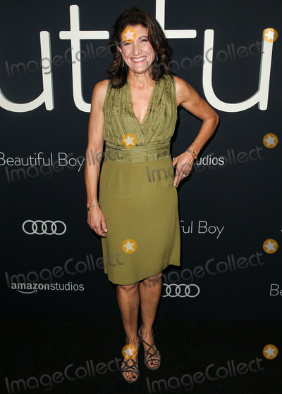 Amy Aquino Photo - BEVERLY HILLS LOS ANGELES CA USA - OCTOBER 08 Amy Aquino at the Los Angeles Premiere Of Amazon Studios Beautiful Boy held at the Samuel Goldwyn Theater at The Academy of Motion Picture Arts and Sciences on October 8 2018 in Beverly Hills Los Angeles California United States (Photo by Image Press Agency)