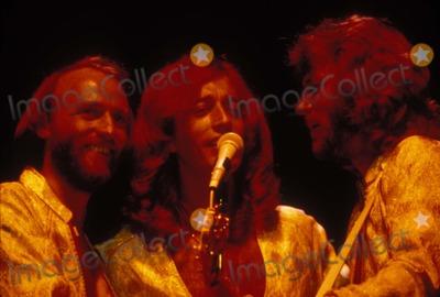 Bee Gees Photo - Bee Gees Maurice Robinn and Barry Gibb Photo by Globe Photos Inc Mauricegibbretro