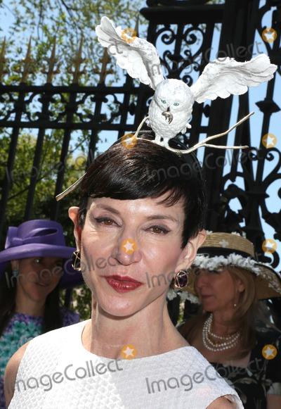 Amy Fine Collins Photo - The Central Park Conservancy Hats Luncheon 2013 the Conservatory Garden Central Park NYC May 1 2013 Photos by Sonia Moskowitz Globe Photos Inc 2013 Amy Fine Collins
