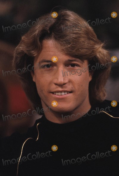 Andy Gibb Photo - Andy Gibb R8024 Photo by Donald Sanders-Globe Photos Inc